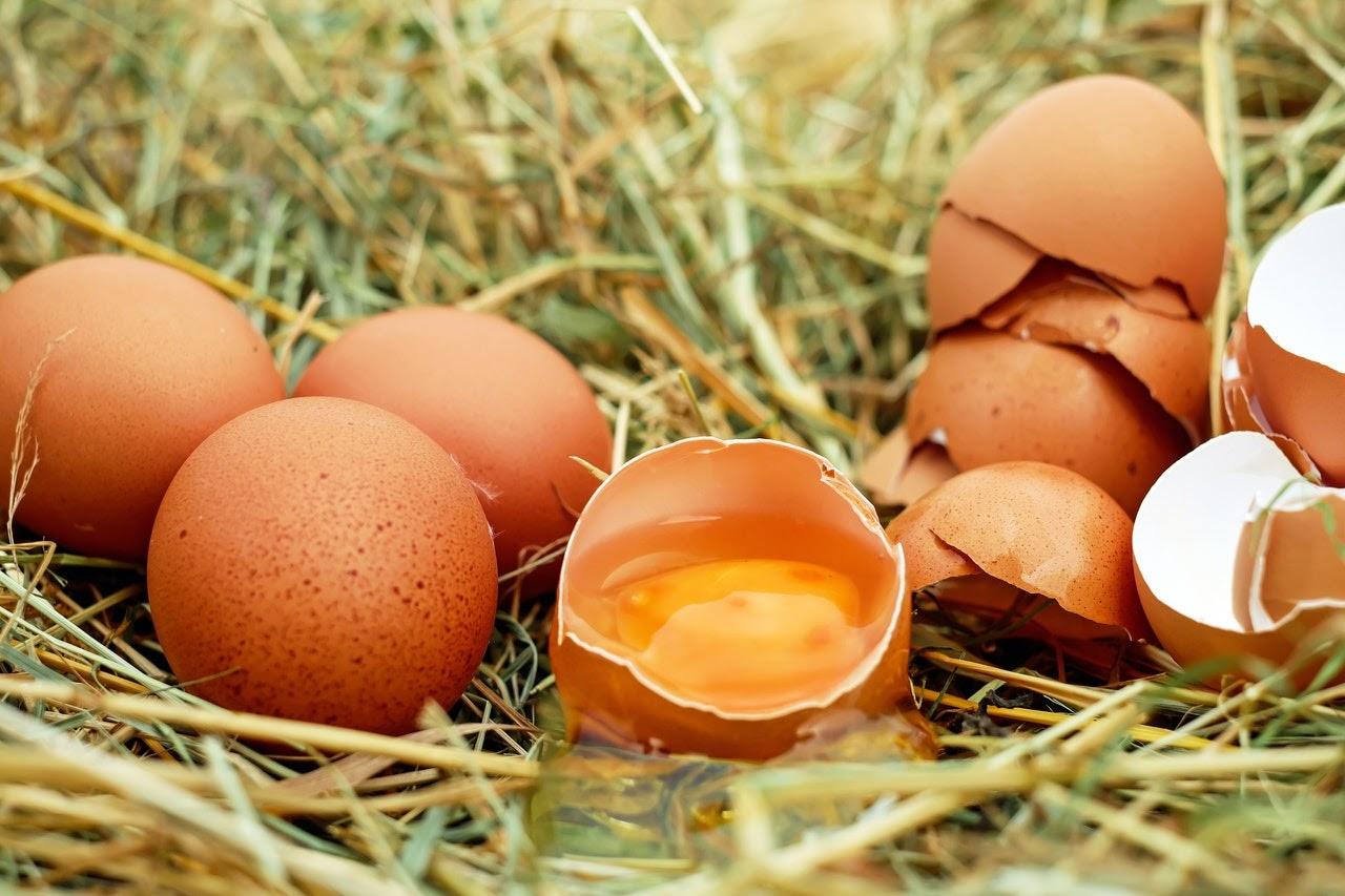 egg cracked open exposed yolk